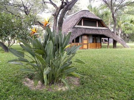 <p> Touristenunterkunft in der n'Kwazi Lodge</p>