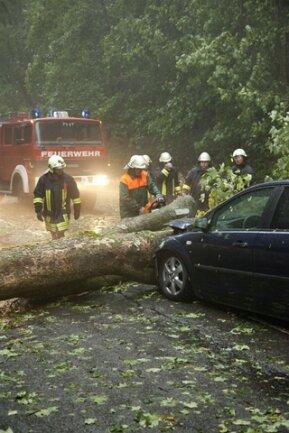 <p> Auf der Bundesstraße 101 zwischen Annaberg und Thermalbad Wiesenbad fuhr ein Auto frontal in einen Baum, der auf die Straße gefallen war.</p>