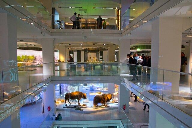 <p> Inszeniert hat die Dauerausstellung des Chemnitzer Archäologiemuseums Uwe Brückner und sein Stuttgarter Atelier.</p>