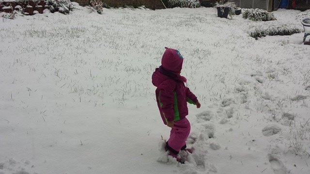 <p> Auch viele Facebook-Nutzer haben uns Schnee-Bilder geschickt, die wir an dieser Stelle veröffentlichen möchten. Vielen Dank an alle!</p> <p> Bild: In Adorf/Vogtland</p>