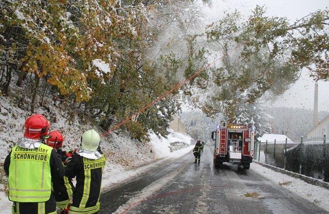 <p> Entlang der Bundesstraße 283 zwischen Schönheide und Rautenkranz neigten sich Straßenbäume aufgrund der Schneelast über die Fahrbahn. Die Freiwillige Feuerwehr Schönheide war im Einsatz.</p>