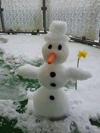 <p> Aus dem ersten Schnee auf dem Balkon gebaut.</p>