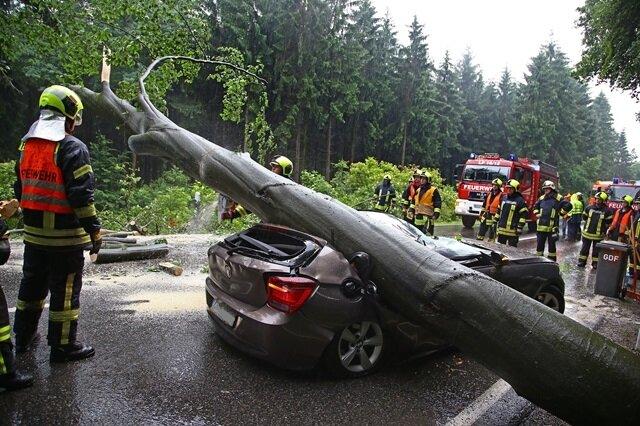 <p> Ein Baum ist am Freitagmorgen am alten Sachsenring bei Hohenstein-Ernstthal entwurzelt worden und auf ein Auto gestürzt.</p>