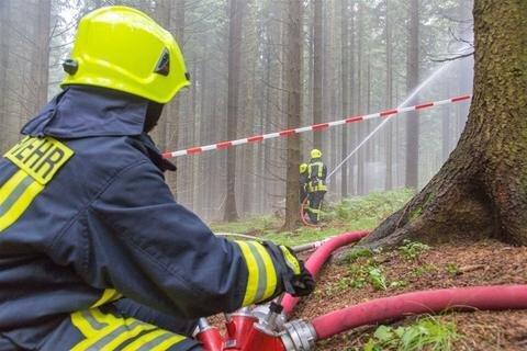 <p>Im Bereich der Talsperre Cranzahl wurde ein großer Waldbrand simuliert.</p>
