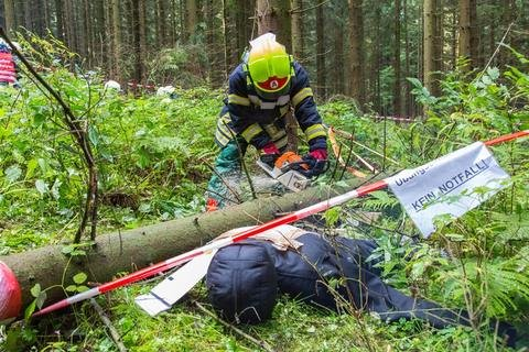 <p>Dem Szenario nach musste eine achtköpfige Touristengruppe gerettet werden, die sich während eines Unwetters im Wald aufhielt und mit einem durch Blitzschlag verursachten Brand konfrontiert war.</p>
