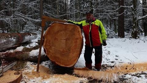 <p>24. Februar: Dieses Prachtexemplar einer Lärche aus dem Landeswald bei Beerheide erzielt den Spitzenwert der Stämme aus dem Forstbezirk Adorf bei der 17. Säge- und Wertholzsubmission von Sachsenforst. Den genauen Erlös wollen die Verantwortlichen nicht verraten. Waldarbeiter Reiner Brittling bekommt so einen Stamm jedenfalls nicht alle Tage vor seine Säge. Der Baum ist rund 250 Jahre alt. Ein führender Furnierholzhersteller aus Bayern hat den Stamm bei der Auktion in der Nähe von Dresden erstanden.</p>