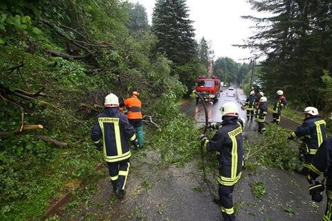 <p>Dort wurden Bäume gefällt, die auf der Straße lagen. Die Talstraße war im Bereich des Einsatzortes für eine halbe Stunde gesperrt.</p>