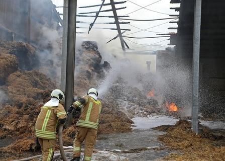 <p>Die Kriminalpolizei hat die Ermittlungen zur Brandursache aufgenommen, dabei kam auch ein Brandmittelspürhund zum Einsatz.</p>