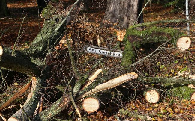 <p>Wie es am Sonntagmittag hieß, sind aufgrund des Sturmes bereits mehr als 300 Notrufe innerhalb der vergangenen zwölf Stunden bei der Polizeidirektion Chemnitz eingegangen. In Waldenburg am Amtsberg sind zwei Linden abgebrochen und haben sich in den Kronen der anderen Bäume verhangen.</p>
