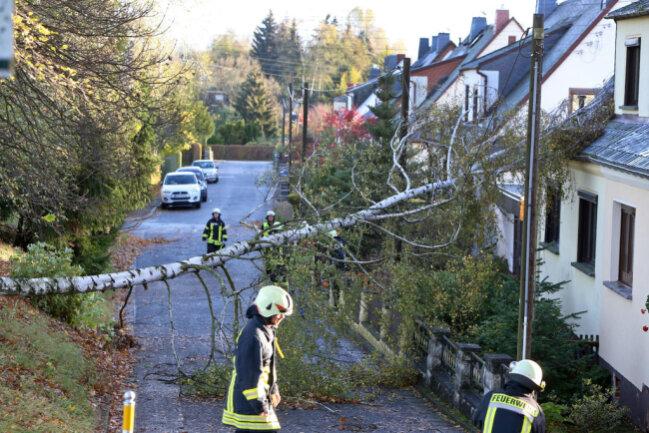 <p>Durch die zahlreichen entwurzelten Bäume wurden auch Wohnhäuser und Pkws beschädigt. Hier ein Haus in der Turnerstraße in Oberlungwitz.</p>