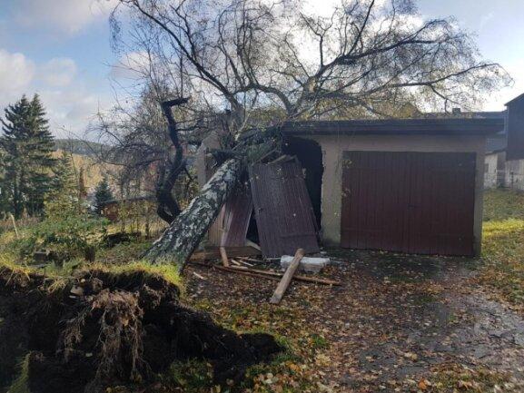 <p>In Schönheide wurde eine Garage durch eine entwurzelte Birke schwer beschädigt. Auch hier kam die Feuerwehr zum Einsatz und musste den Baum erst klein schneiden und dann abtragen.</p>