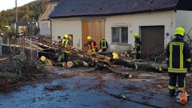 <p>Am frühen Morgen stürzte ein Baum auf der Hauptstrasse in Großschönau in einen Strommast. Die Feuerwehr musste Bergungsarbeiten vornhemen.</p>