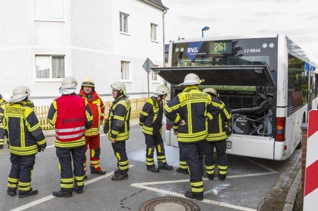 <p>Die Flammen traten im hinteren Bereich des Fahrzeugs auf.</p>