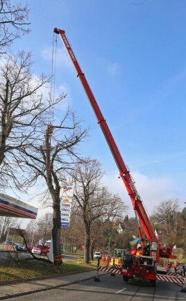 <p>Laut Wehrleiter Sven Weinhold konnte der Baum nicht ohne weiteres zerlegt werden, deshalb wurde der Kran der Berufsfeuerwehr Chemnitz angefordert. Der hob den rund drei Tonnen schweren Stamm weg.</p>