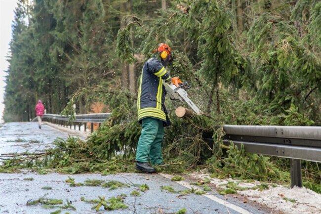 <p>Die B95 musste wegen umgestürzter Bäume gesperrt werden.</p>