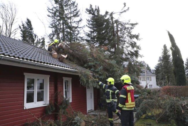 <p>Gegen 16 Uhr konnte in der Liebermannstraße in Chemnitz-Glösa ein Baum dem Sturm nicht mehr standhalten.</p>
