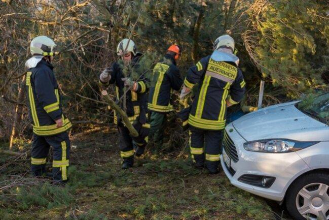 <p>Feuerwehreinsatz am Katholischen Berg in Auerbach.</p>