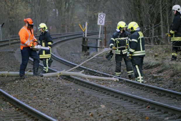 <p>Auf der Bahnstrecke Chemnitz-Burgstädt lag ein Baum auf den Schienen. Die Feuerwehr Glösa konnte die Strecke bereits räumen.</p>