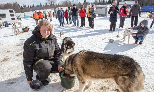 <p>Joana Bebert aus Teltow-Fläming gab ihren Schlittenhunden am Samstag mit Katzenfutter angereichertes Wasser, damit sie mit ausreichend Flüssigkeit und Energie versorgt ins Rennen starten konnten.</p>
