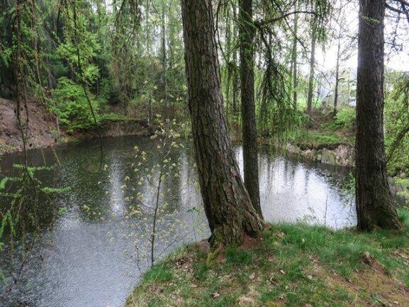 <p>Die Tote trieb am Ufer desSchneiderloch genanntenTeiches, derin einen kleinen Waldstück an der Hartensteiner Straße liegt.</p>