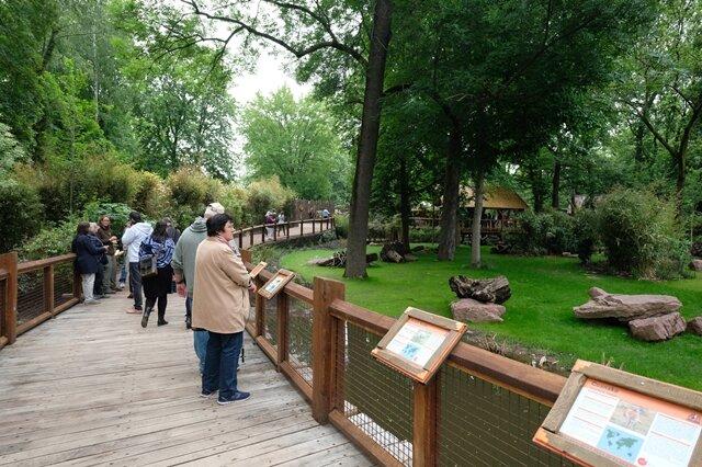 <p>Besucher können seit Donnerstag auf einem bequemen Weg die Südamerika-Anlage erkunden.</p>