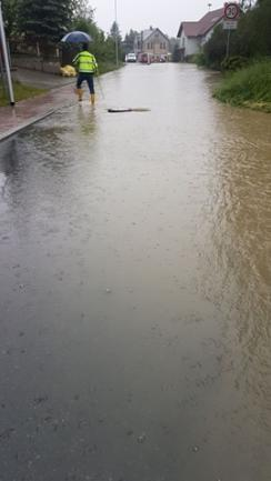 <p>Eine überflutete Straße im Plauener Ortsteil Thiergarten.</p>