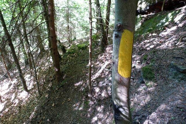 <p>Die Wegmarkierung des Forststeigs: ein gelber Balken.</p>