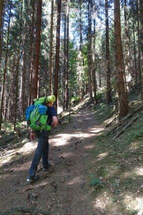 <p>Und los gehts. Die erste Etappe führt von Schöna über den Großen Zschirnstein.</p>
