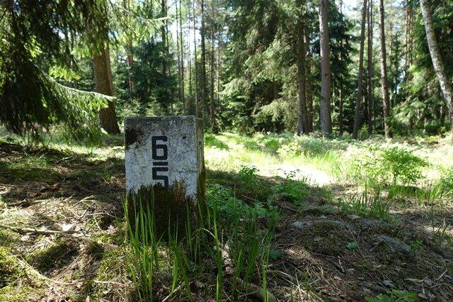 <p>Es geht einfach mal durch den Wald...</p>