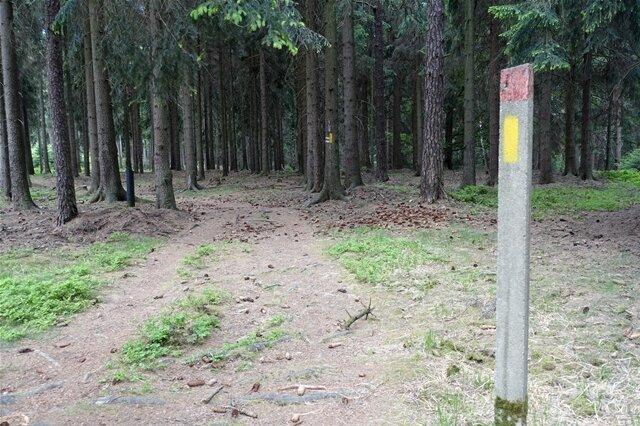 <p>Hier biegt der Forststeig ins Tschechische ab. Das nächste Ziel wäre der Hohe Schneeberg.</p>
