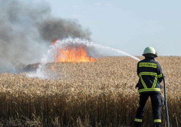 <p>Der Fahrbahnrand brannte am Ortsausgang Wechselburg in Höhe eines Wasserbehälters auf der rechten Seite.</p>