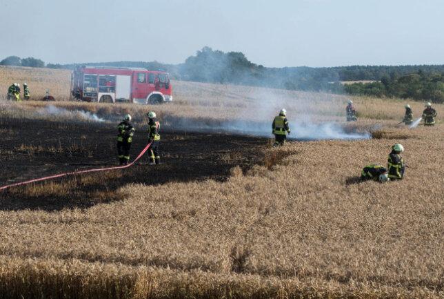 <p>Rund 1,5 Hektar standen in Flammen.</p>  <p></p>