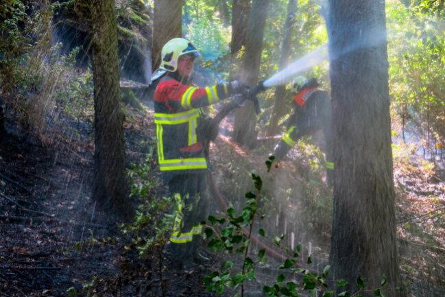 <p>Wegen eines Waldbrands sind am Dienstagnachmittag die Feuerwehren aus Bockau, Aue, Zschorlau, Albernau, Lauter-Bernsbach, Schönheide und Burkhardtsgrün ausgerückt.</p>