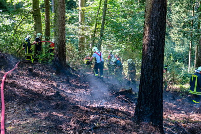<p>Weil der Waldboden durch die lang anhaltende Wärme sehr trocken ist, musste er von den Einsatzkräften der Feuerwehr umgegraben werden.</p>