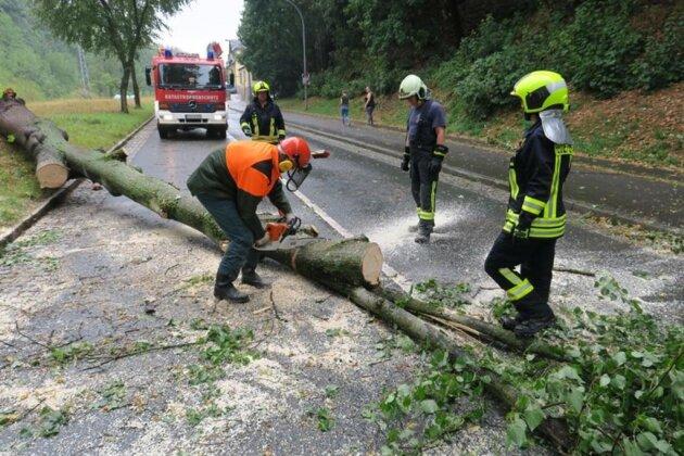 <p>Nach einem kurzen, aber heftigen Unwetter in Aue und Umgebung ist am Nachmittag die Bundesstraße 169 in Schneeberg für kurze Zeit gesperrt worden.</p>