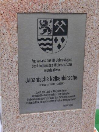<p>Die Tafel an der Stele aus Rochlitzer Porphyr soll künftig an das Landkreis-Jubiläum erinnern. Die Nelkenkirsche wird aber erst im Herbst gepflanzt, wenn die Arbeiten an den Grünanlagen auf dem Bahnhofsvorplatz abgeschlossen werden.</p>