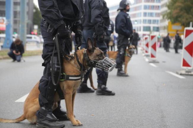 """<p><span class=""""img-info"""">Polizeihunde waren ebenfalls im Einsatz.</span></p>"""