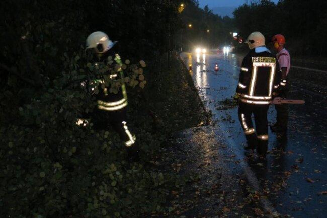 <p>Hier stürzte ein Baum auf die Schwarzenberger Straße in Aue - daher musste eine Fahrspur gesperrt werden.</p>