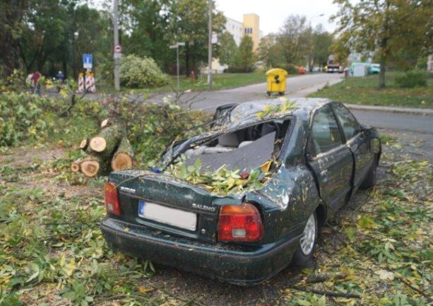 <p>Auf dieses Auto auf einem Parkplatz am Neubaugebiet kracht ein Baum.</p>