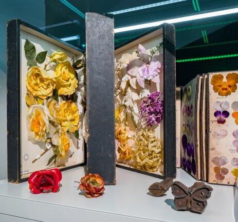 <p>Als Wiege der Kunstblumenherstellung gilt das böhmische Nixdorf. Die feinen Seidenblumen waren auch in Sachsen sehr begehrt. Mit dem Beitritt Sachsens zum Deutschen Zollverein 1834 verlagerte sich die Herstellung ins grenznahe Sebnitz.</p>