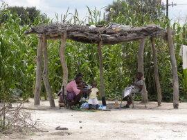 <p>Schattiger Empfangsplatz gleich neben dem Maisfeld für die Familie und Besucher</p>