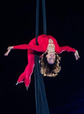 <p>Marie-Pierre Leray aus Frankreich, einst als Einzel- und Paarläuferin aktiv, zeigte atemberaubende Akrobatik teilweise hoch über der Eisfläche.</p>