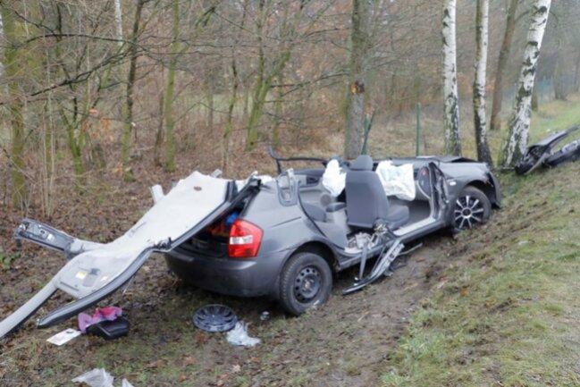 <p>Der Wagen landete in einer Baumgruppe.</p>