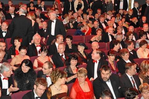Chemnitzer Opernball 2009, Bildnummer: 197
