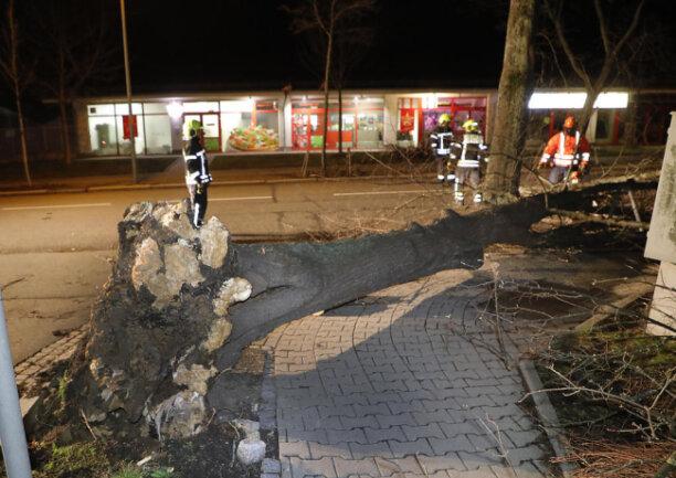 <p>Auf dem Sonnenberg&nbsp;an der Ecke Heinrich-Schütz-Straße/Bayreuther Straße in Chemnitz stürzte ein Baum auf die Straße.&nbsp;</p>