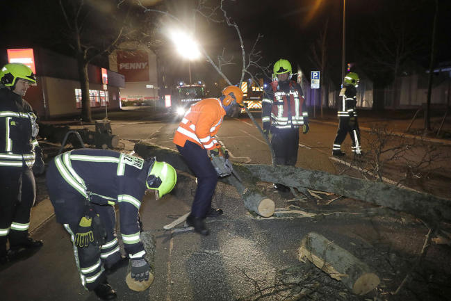 <p>Der Baum wurde von Feuerwehrleuten zersägt und weggeräumt.&nbsp;</p>