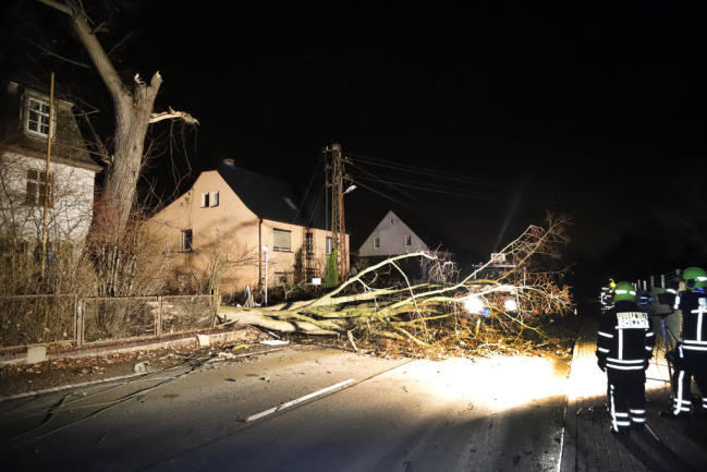 <p>In Mittelbach fiel ein Baum auf Stromkabel. Mehrere Haushalte waren ohne Strom.</p>
