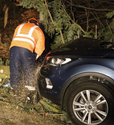 <p>Da sich weitere Bäume im Sturm bedenklich neigten, war der Einsatz für die Feuerwehrleute nicht ungefährlich.</p>