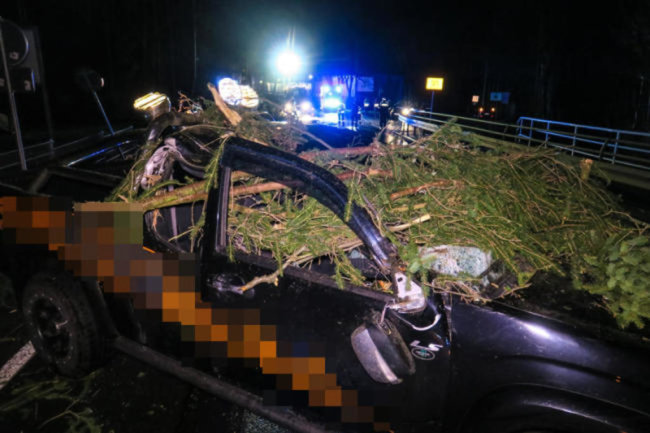 <p>Auf der B169&nbsp;zwischen Aue und Lößnitz in Höhe des Stadions ist am Sonntagabend ein Geländewagen von einem umstürzenden Baum getroffen worden.&nbsp;</p>