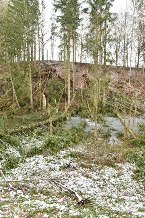 <p>Am Ortseingang Weißenborn sind in Richtung Lichtenberg mehrere Bäume in die Mulde gestürzt.&nbsp;</p>